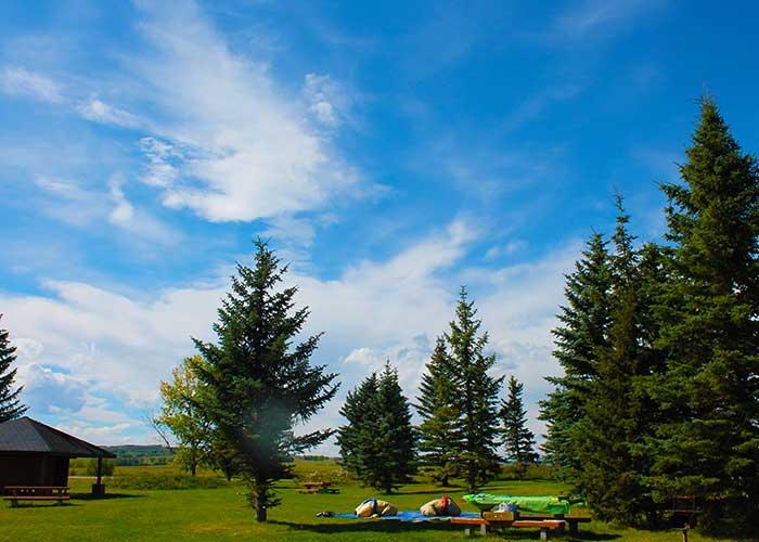 Alberta Landscape